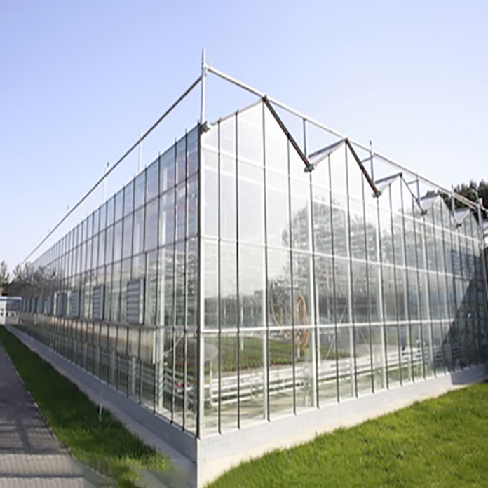 Custom greenhouse roofing options Supply for garden-2