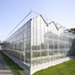 polycarbonate greenhouse panels homebase.jpg