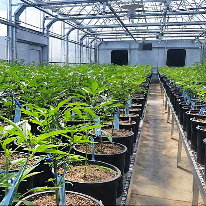Polycarbonate greenhouse kit