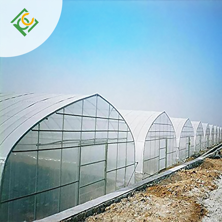 Custom greenhouse roofing options Supply for garden-1