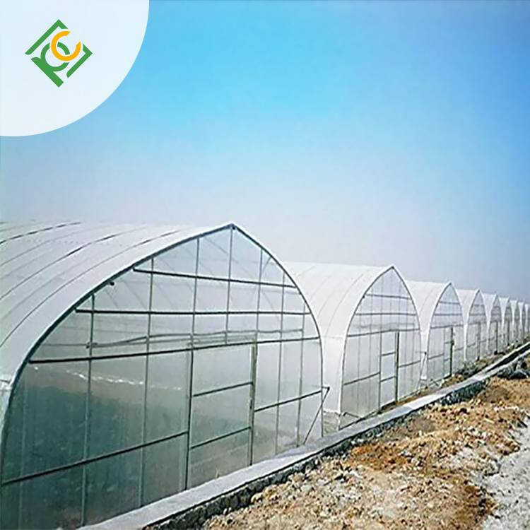 UNQ New double wall plastic sheeting greenhouse for business for flower planting-1