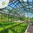 greenhouse 7.jpg