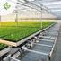 greenhouse 9.jpg