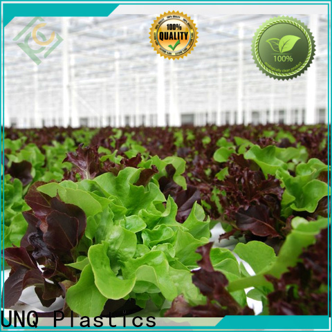 UNQ Top acrylic greenhouse glazing factory for flower planting
