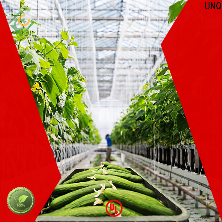 UNQ greenhouse people manufacturers for garden